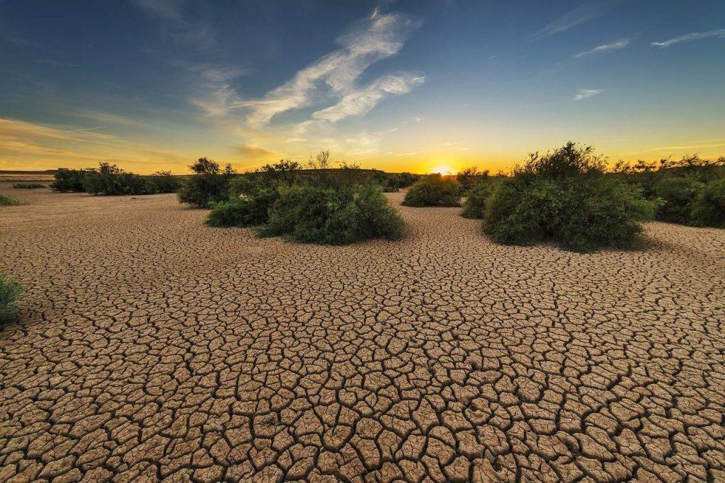 Solo degradado pela seca