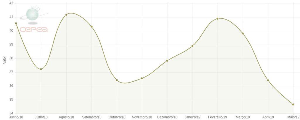 Gráfico com valor de cotação das sacas de milho
