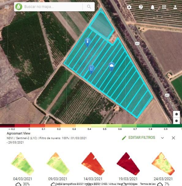 As imagens via satélite com filtro NDVI ajudam no manejo de irrigação das uvas
